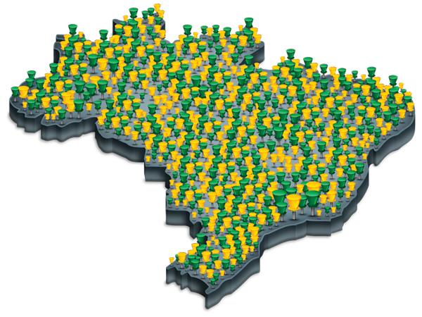 Portal Rede Verde Amarela
